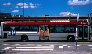 nestandart_transport6
