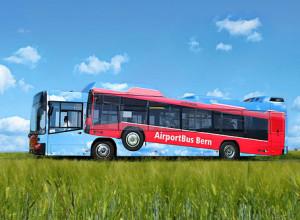 nestandart_transport7