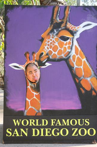 Тантамареска зоопарка Сан-Диего