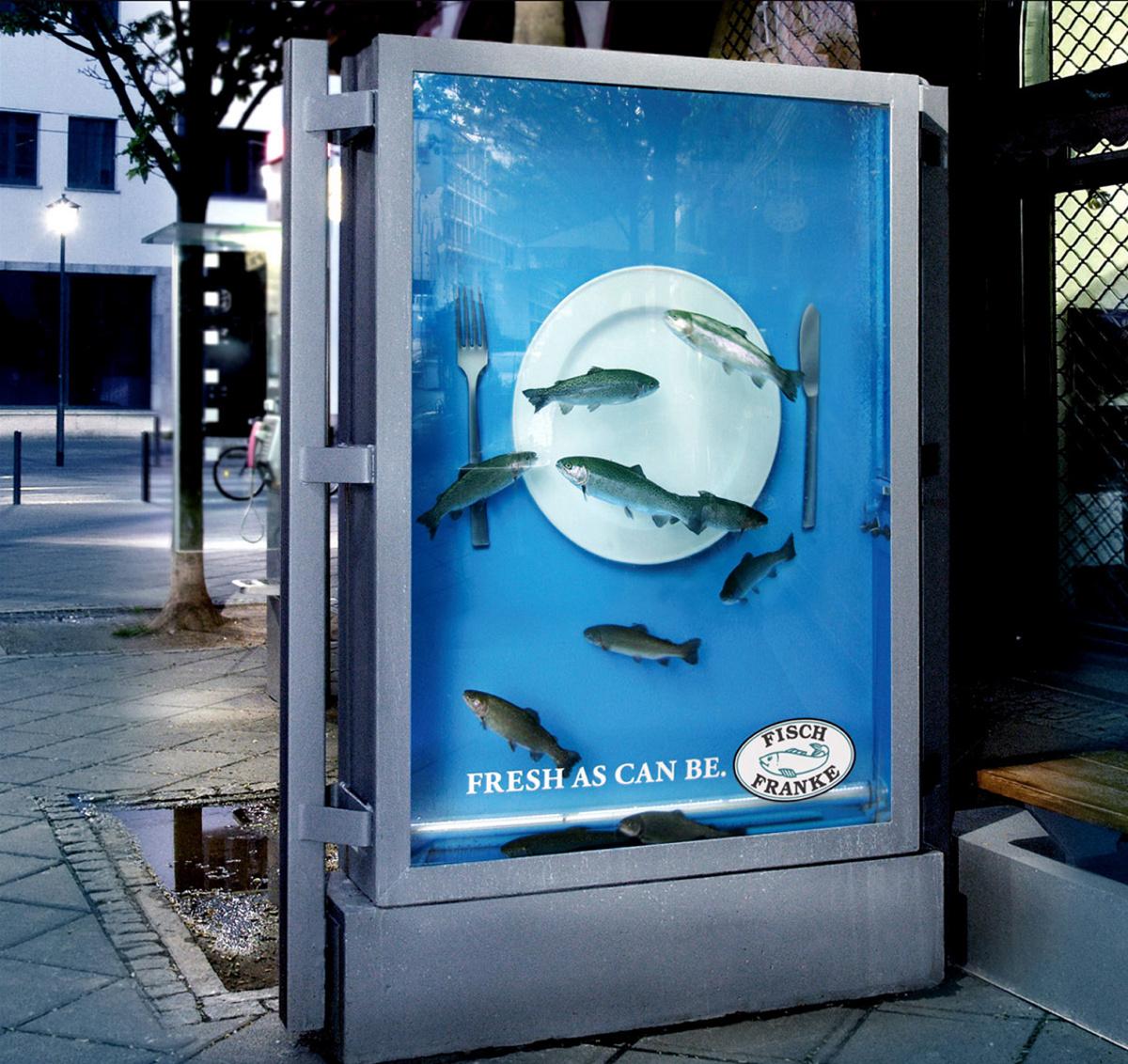 fish_franke